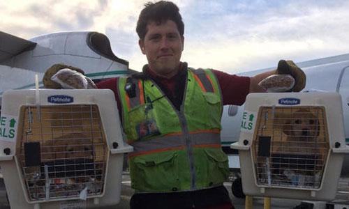 Russell là nhân viên kỹ thuật mặt đất, được quyền tiếp cận phi cơ tại sân bay. Ảnh: CBS.